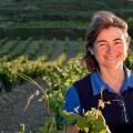 Faire des châteaux en Espagne, faire des châteaux à La Rioja Histoire de la Rioja, terroir et qualité