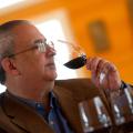 La France : vins et démons – Par MICHEL BETTANE